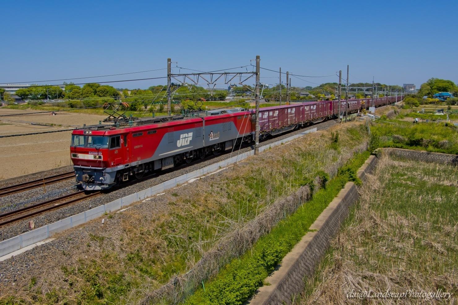 新緑の季節の東北本線貨物列車風景
