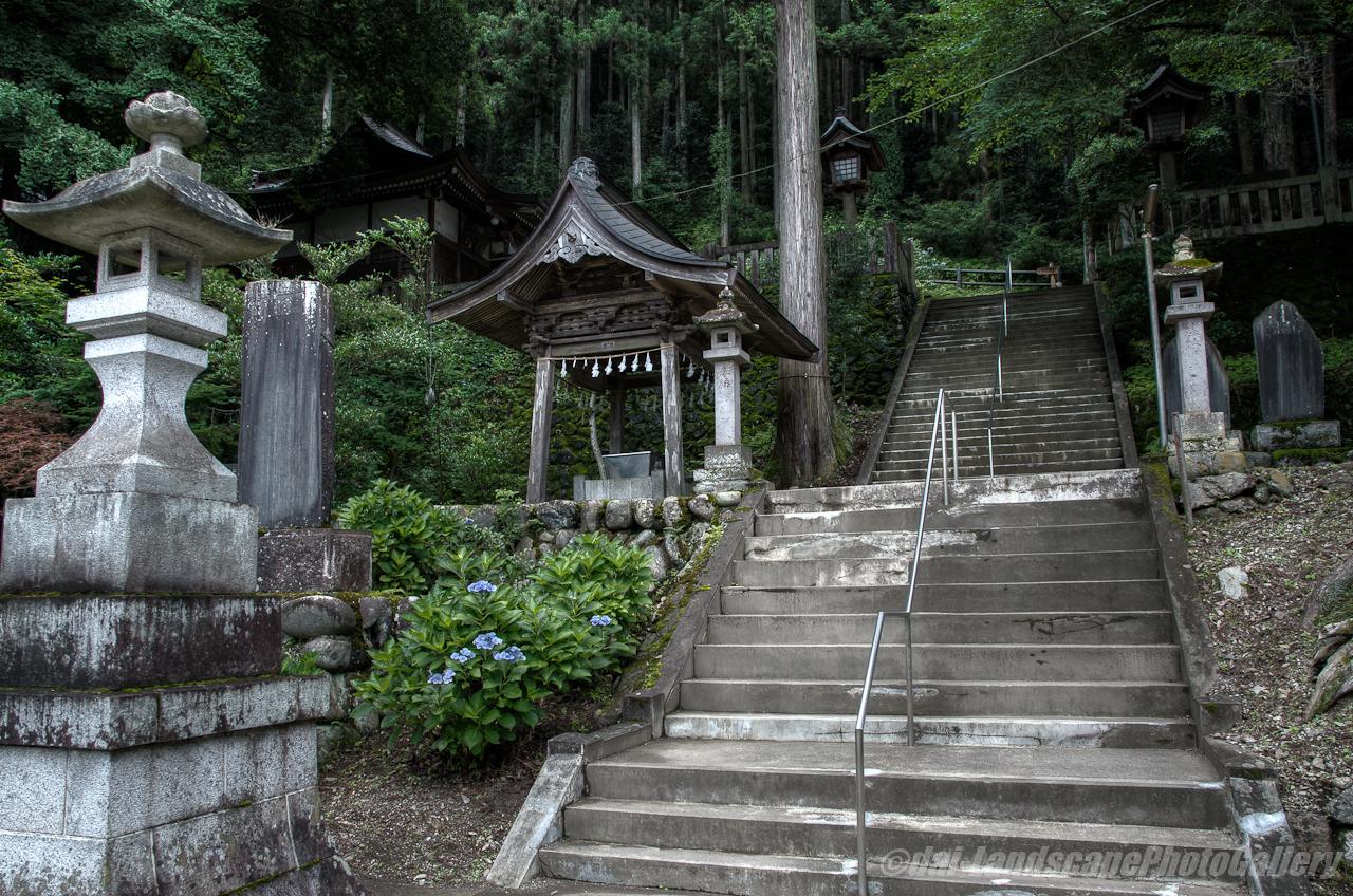秩父若神子神社のあじさい【HDRi】