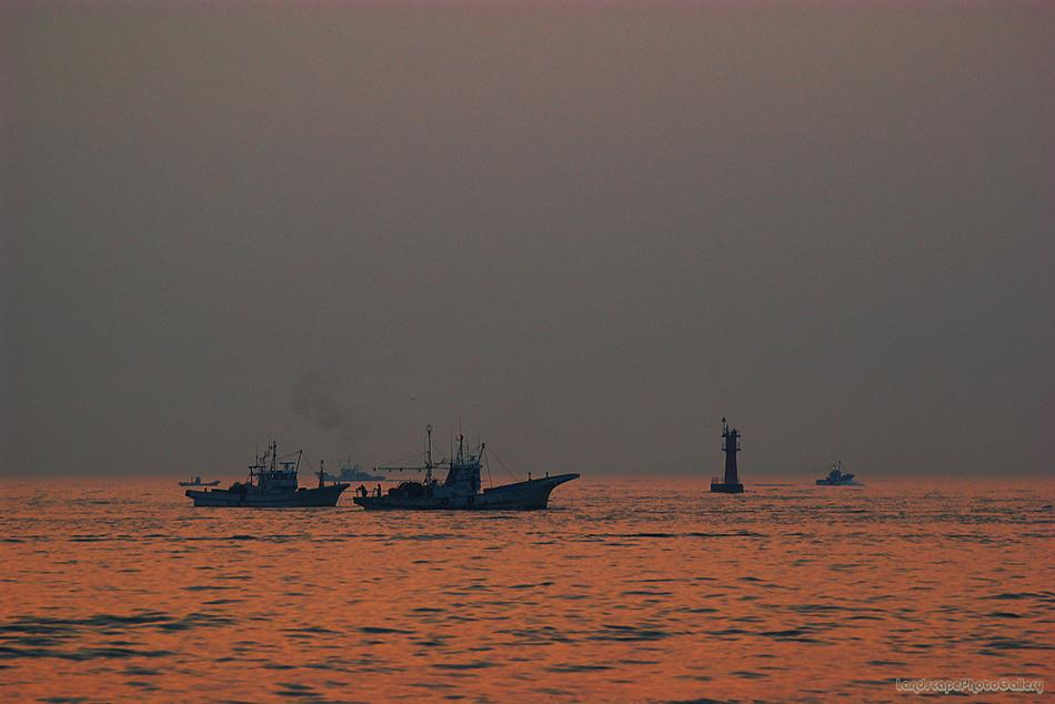 早朝の三河湾