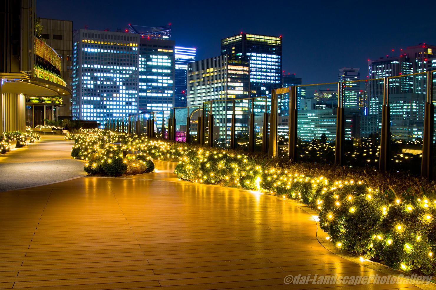 東京ミッドタウン日比谷 パークビューガーデン夜景