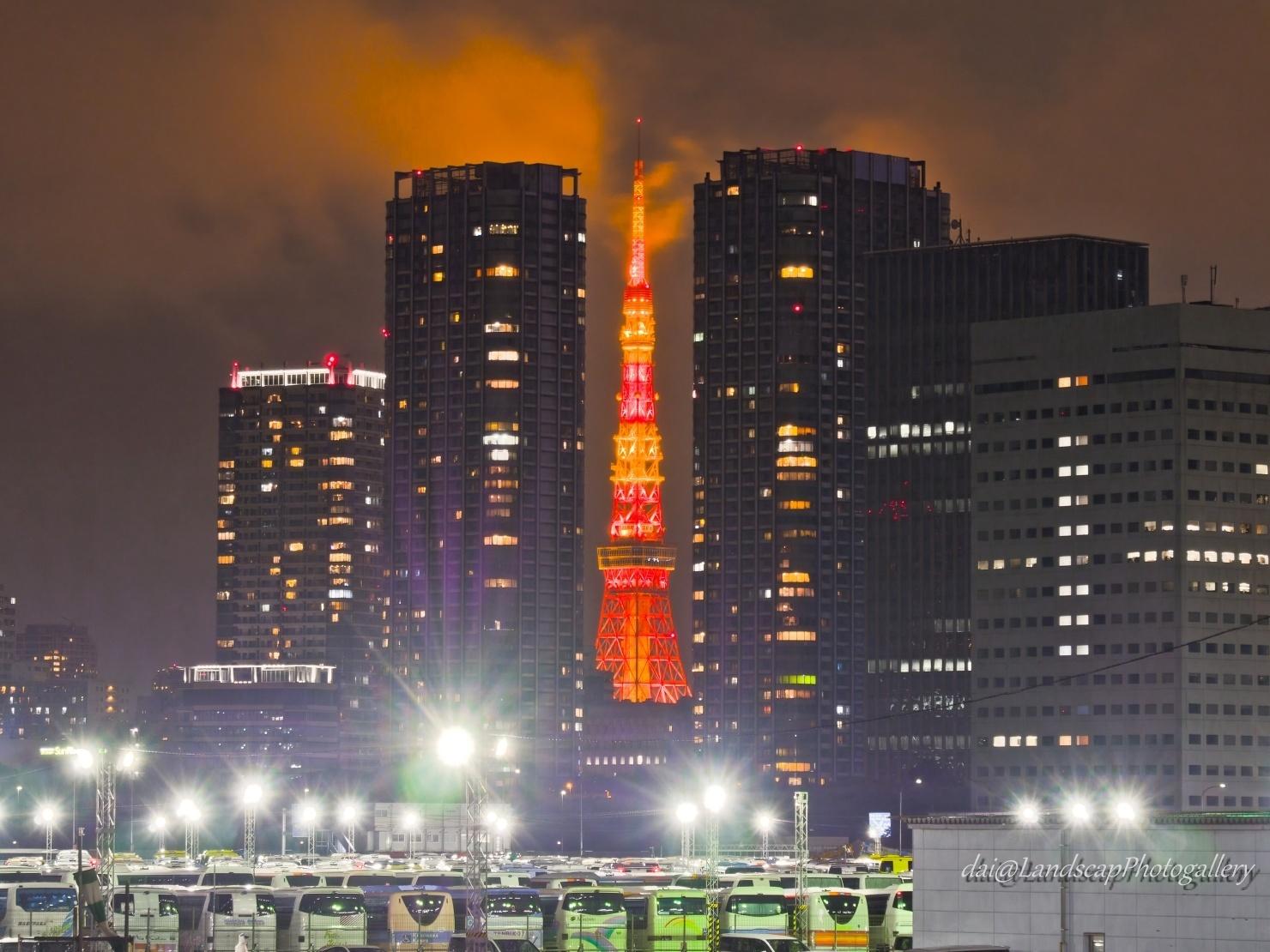 雨の夜の東京タワー