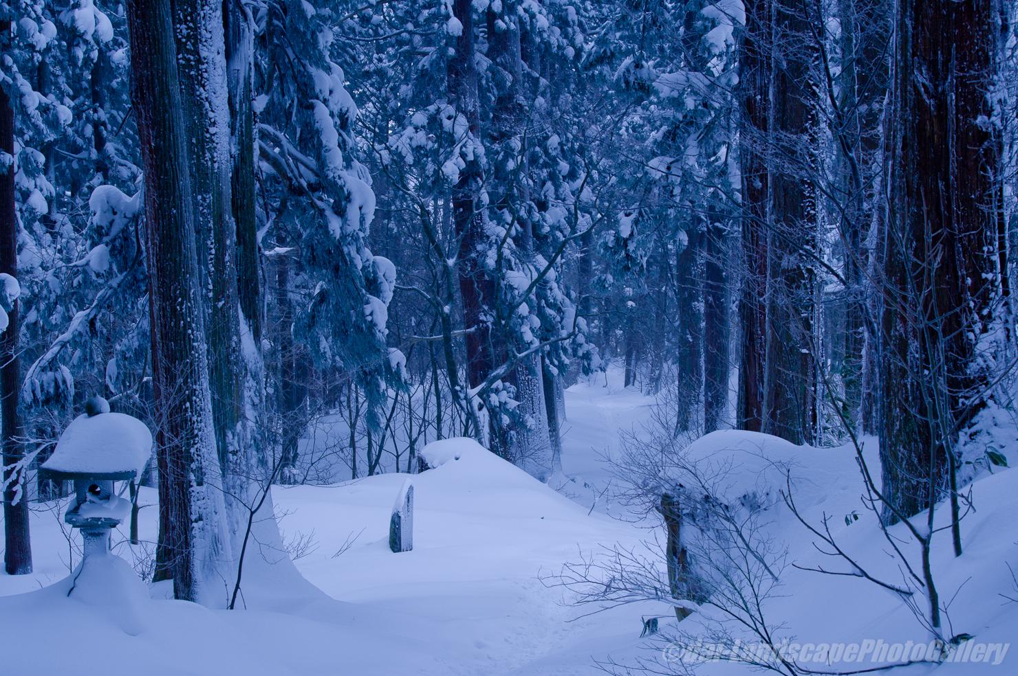 厳冬の羽黒山参道