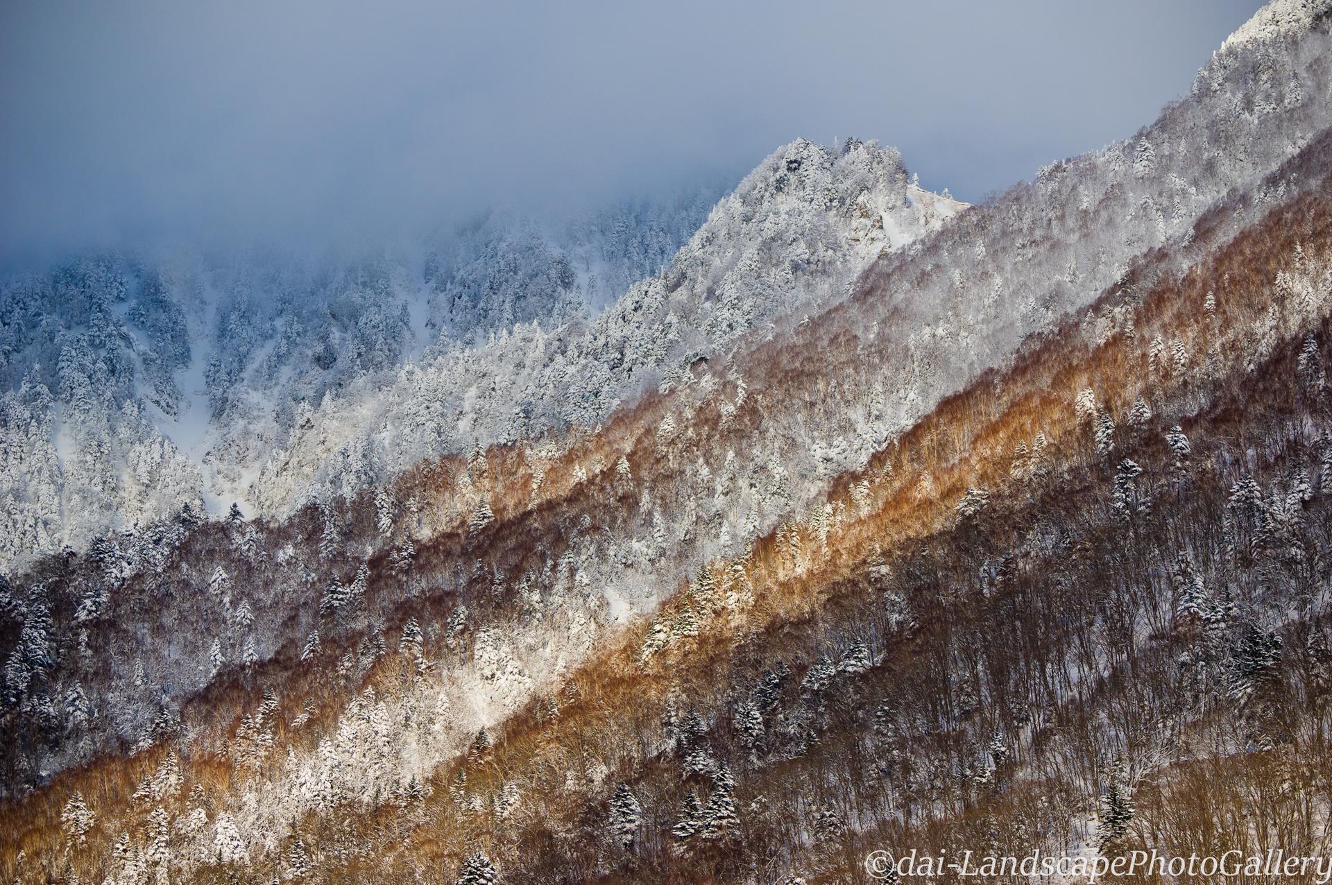 冬山の日差し