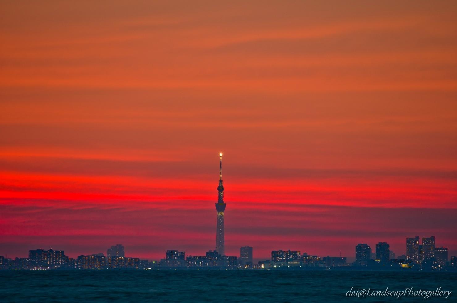 東京スカイツリーと夕焼け空