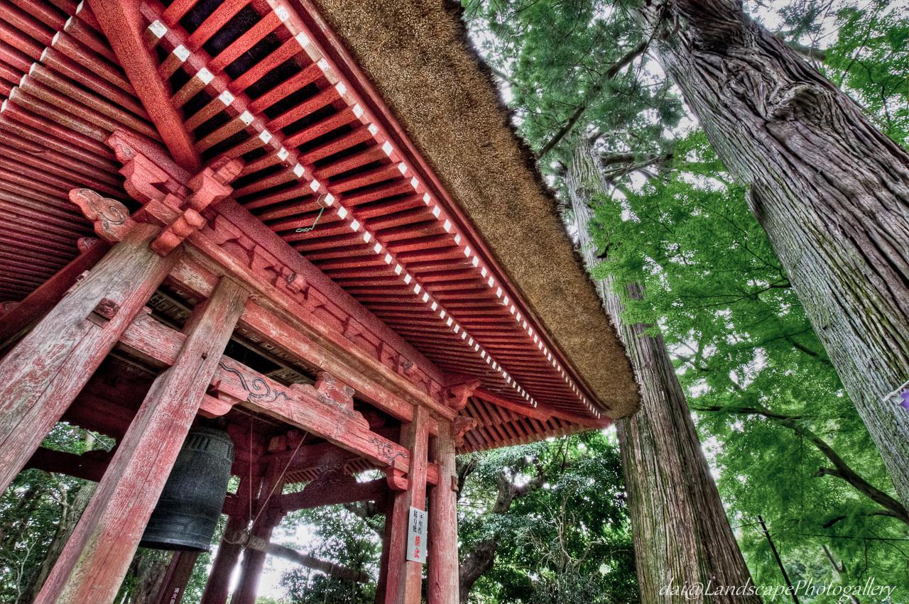 太幡かけの杉と鐘堂【HDRi】