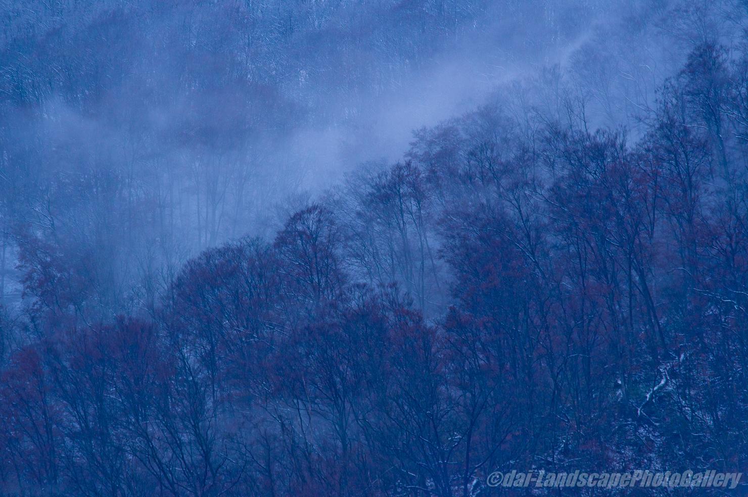 冬の山風景
