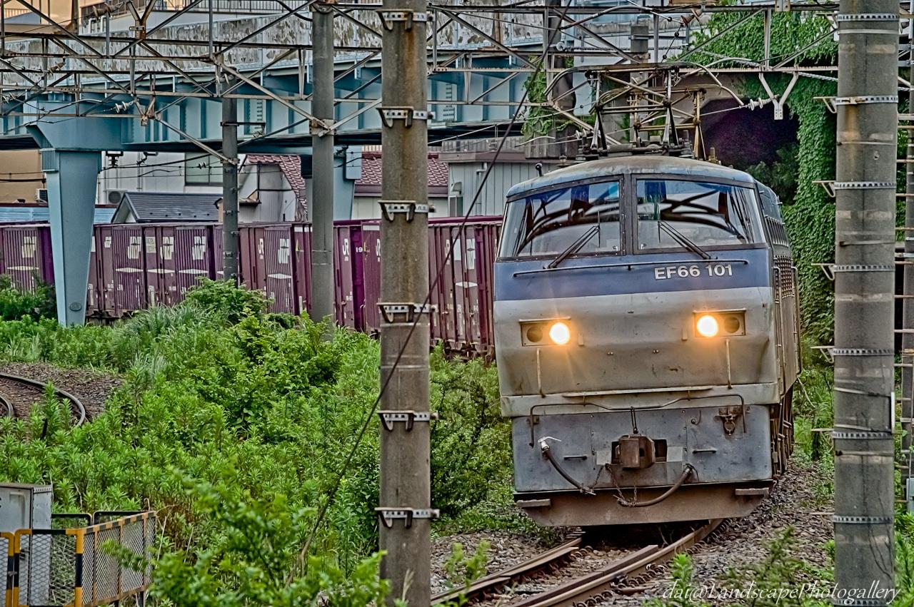 EF210-107 コンテナ列車【HDRi】