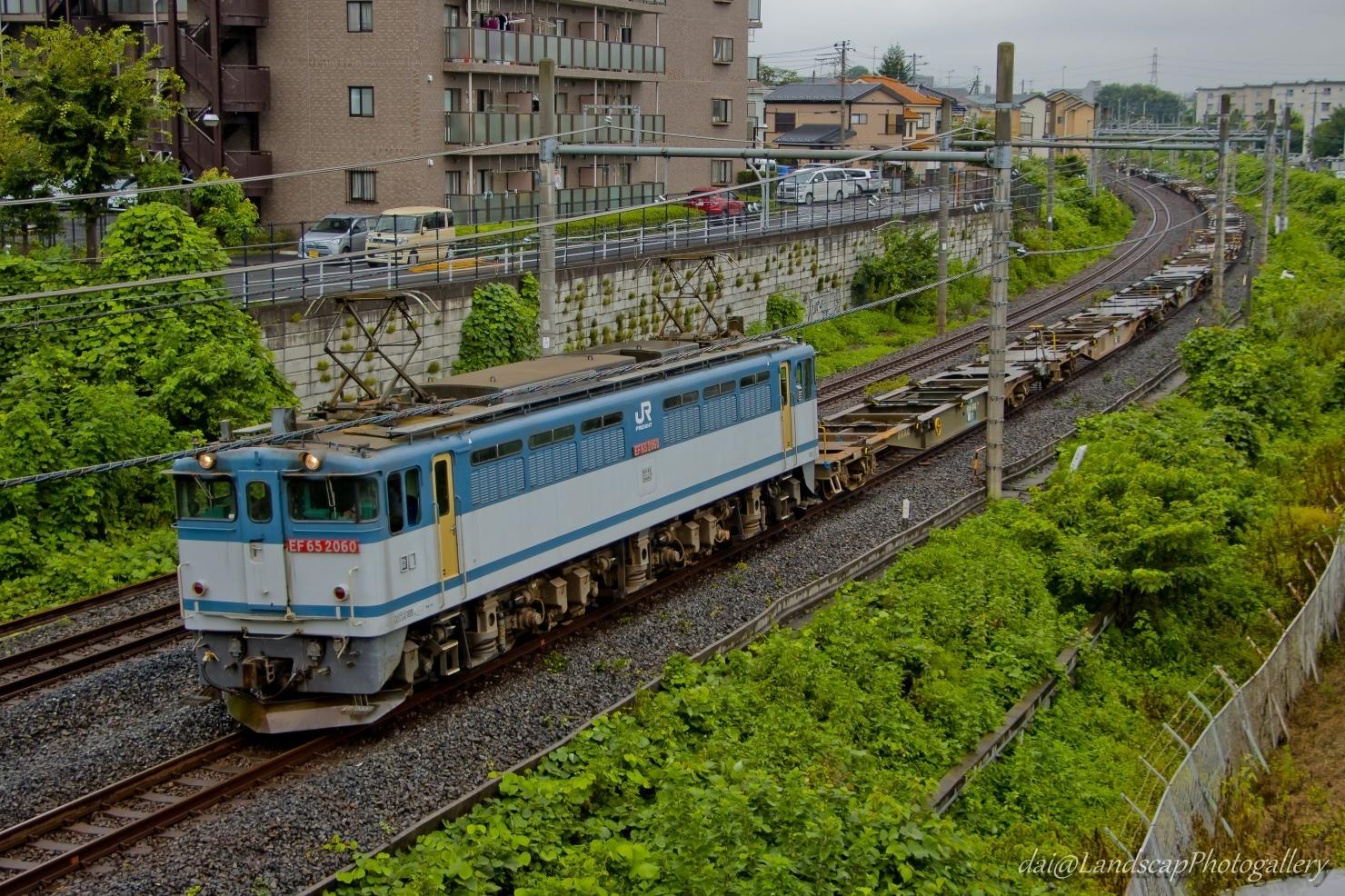 EF65 2060 配給列車