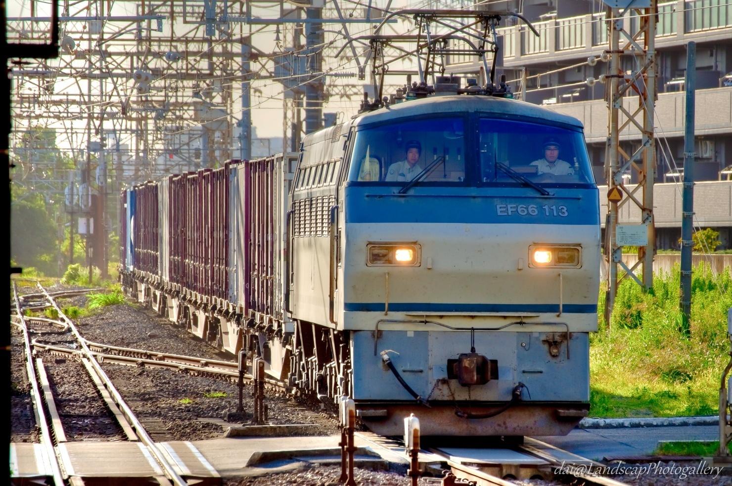 EF66-113 コンテナ列車【HDRi】