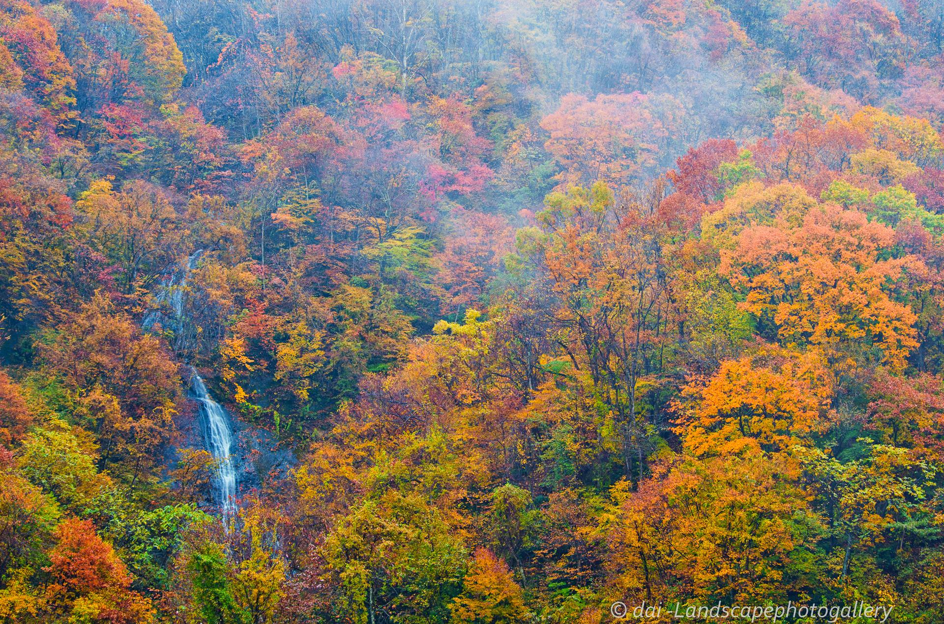 奥裾花渓谷の紅葉風景