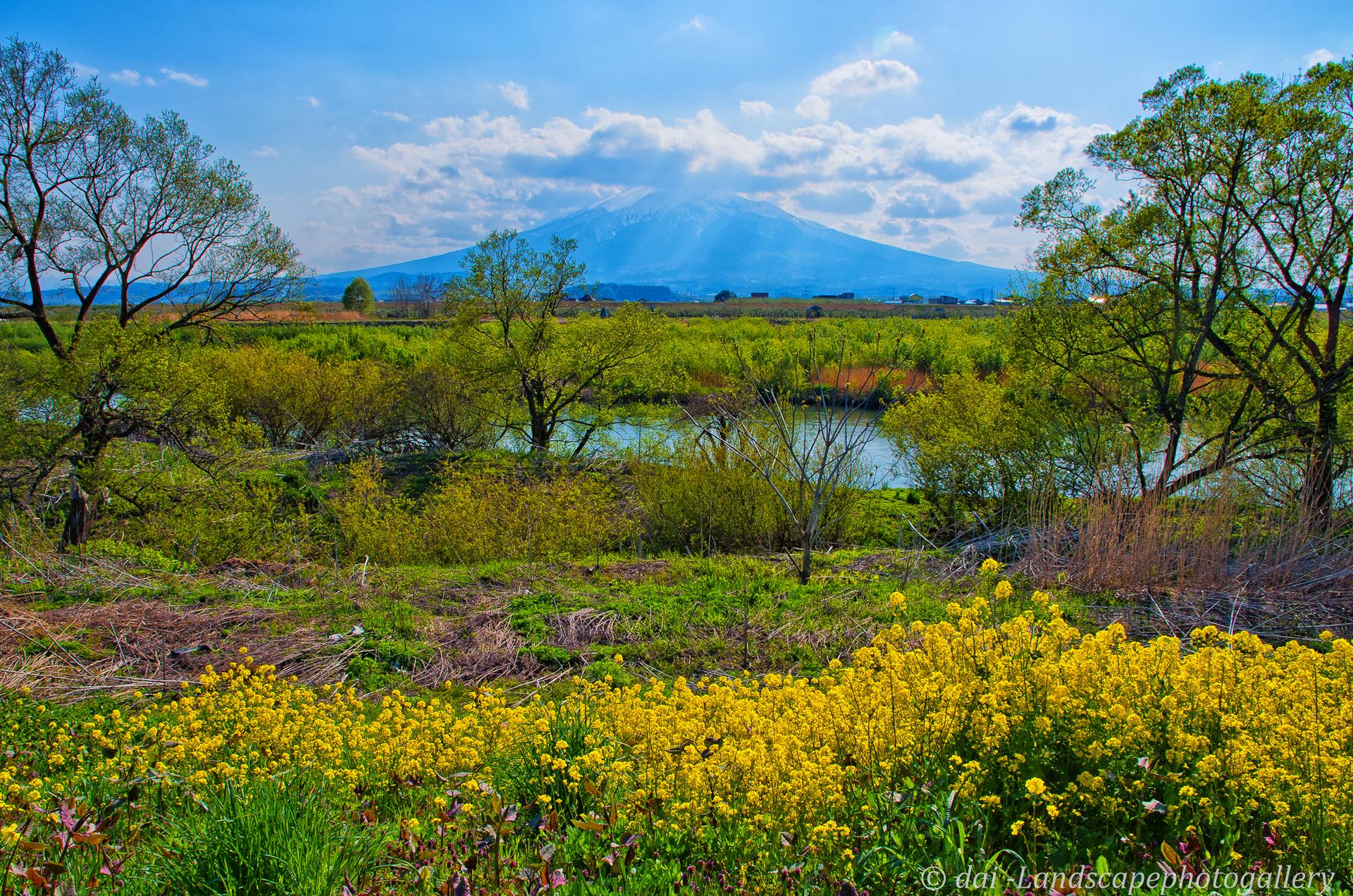 春の岩木川と岩木山