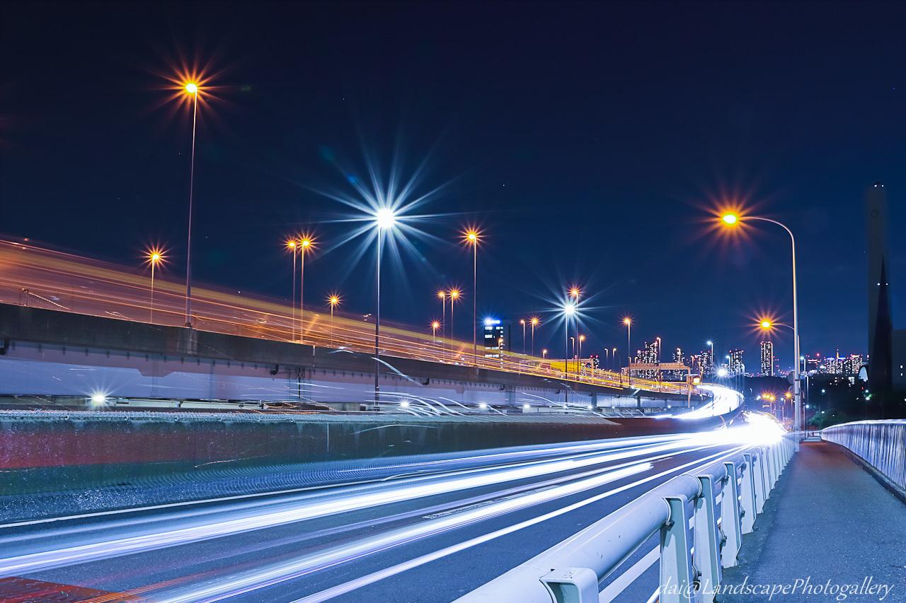 荒川河口橋夜景