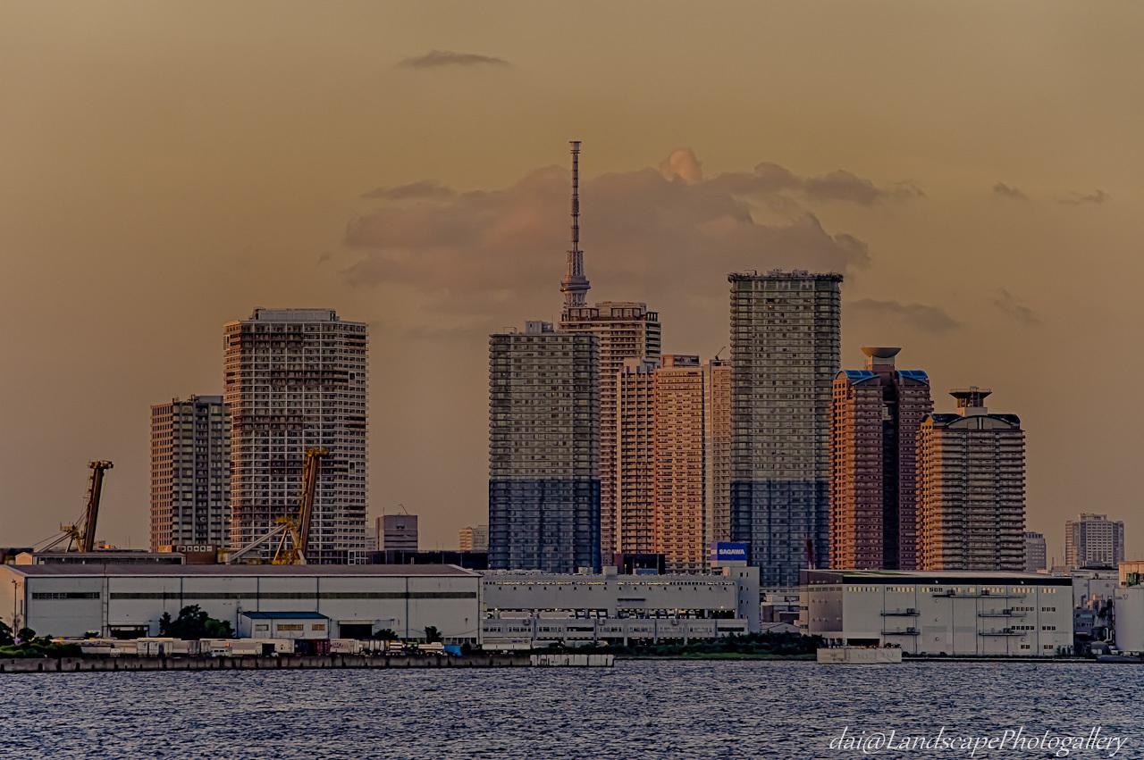 東雲タワーマンション群と東京スカイツリー夕景【HDRi】