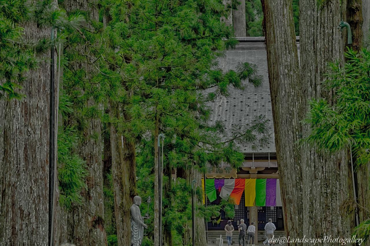 高野山奥の院【HDRi】