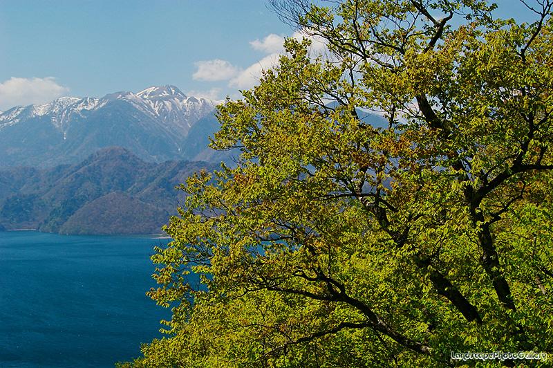春の中禅寺湖を望む