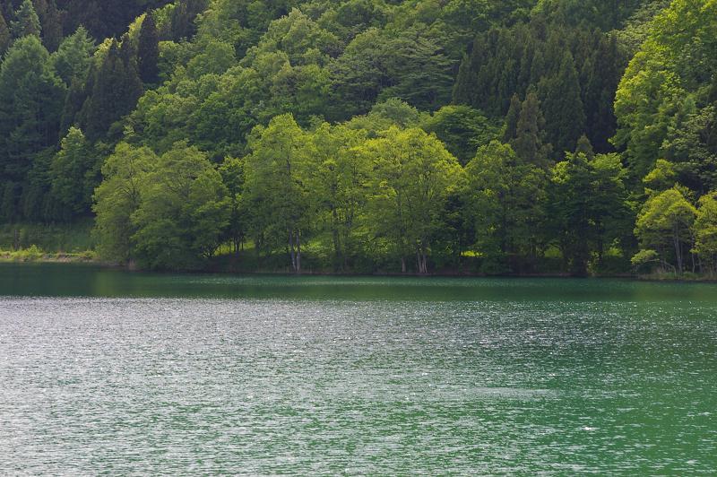 初夏の湖畔