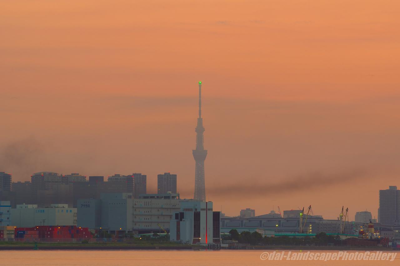 朝焼けの空と東京スカイツリー