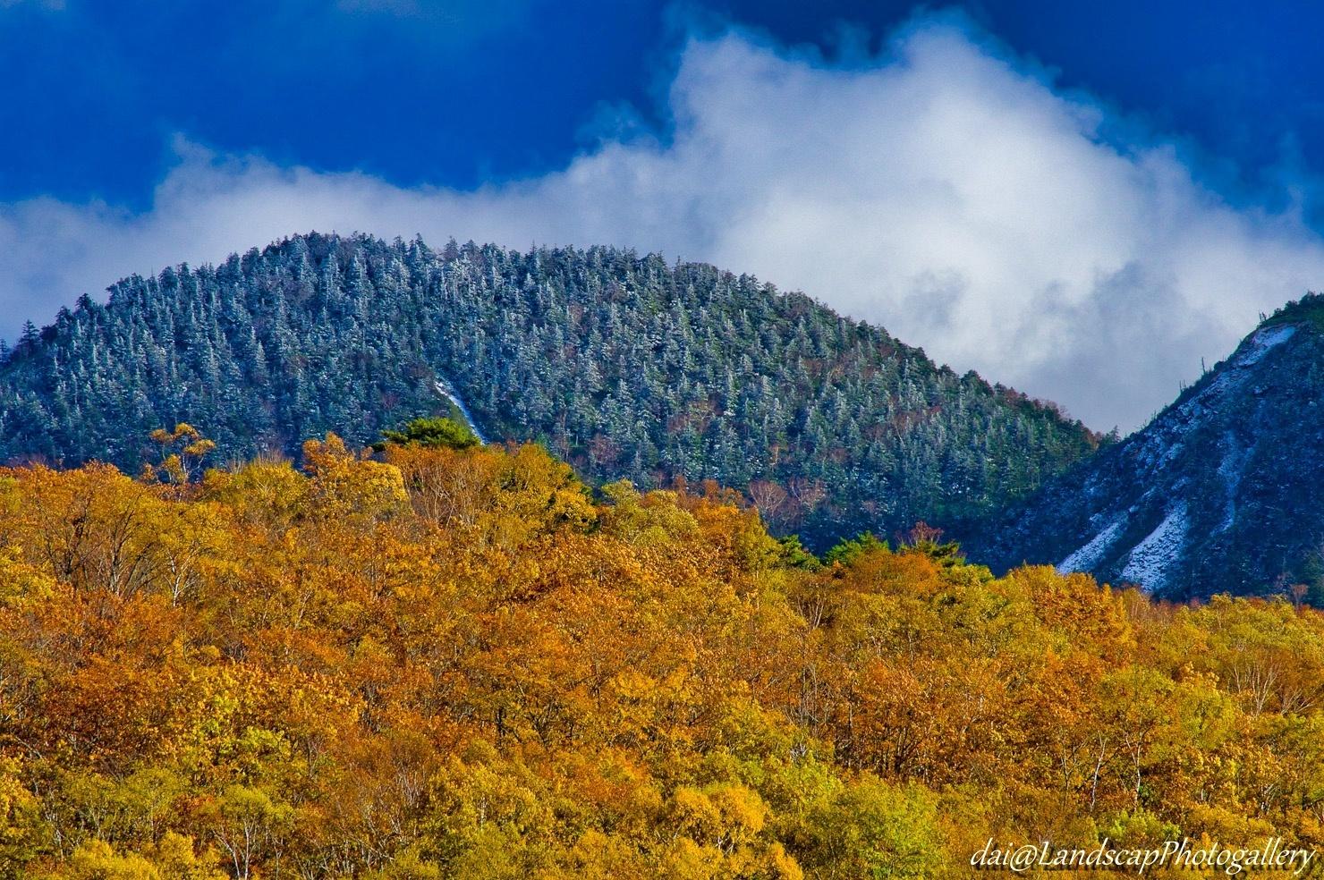 志賀高原 秋の山々