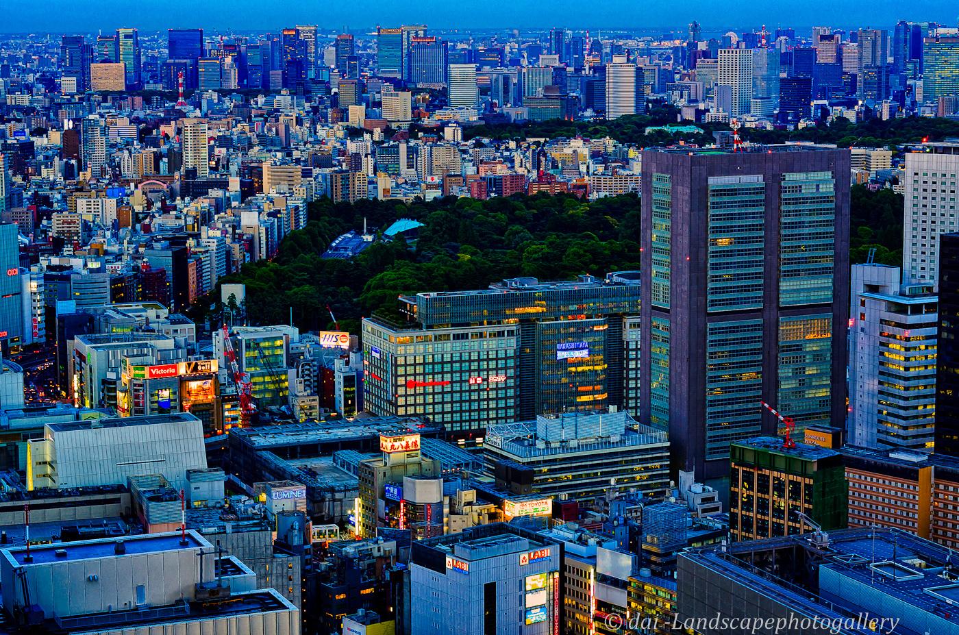 新宿東京都庁 薄暮の夜景