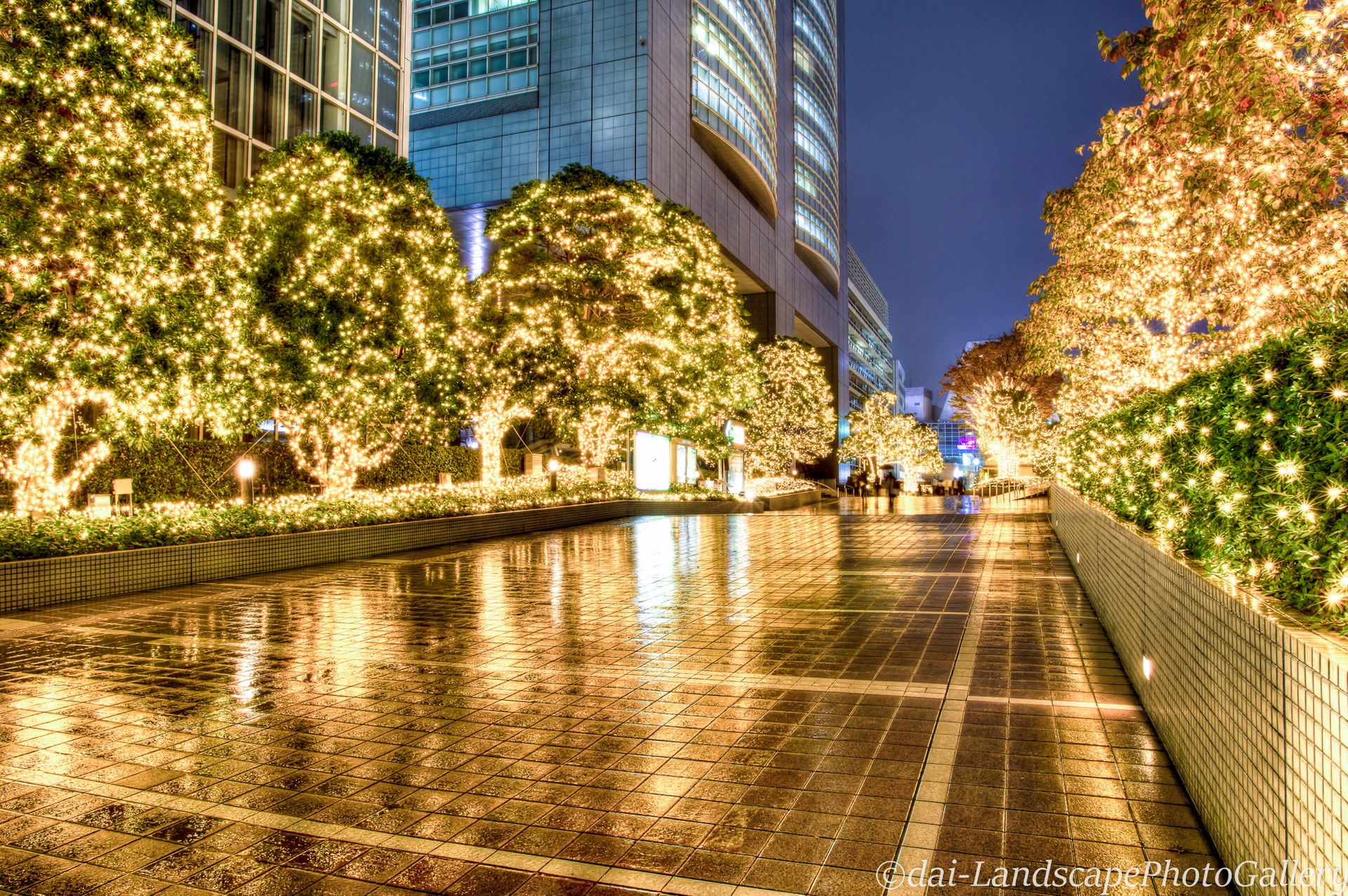 新宿サザンテラス 雨の夜のイルミネーション【HDRi】