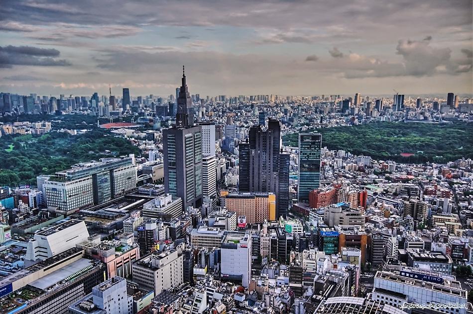 新宿センタービルからの眺望【HDRi】