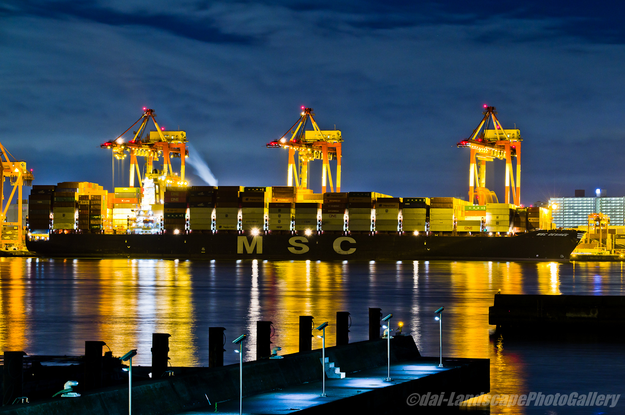 MSC DESIREE 夜の荷役風景