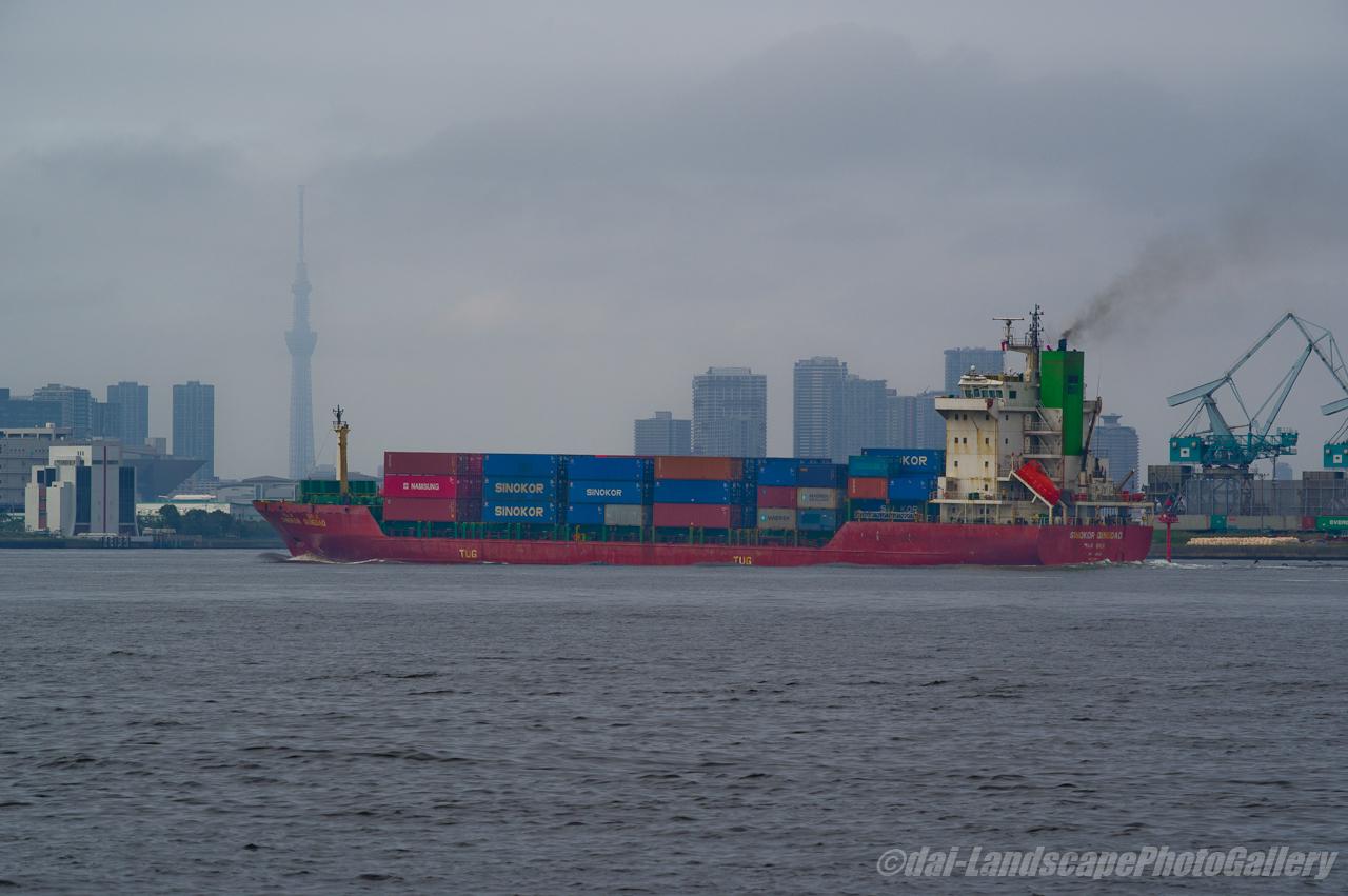 SINOKOR QINGDAO 東京港入港風景