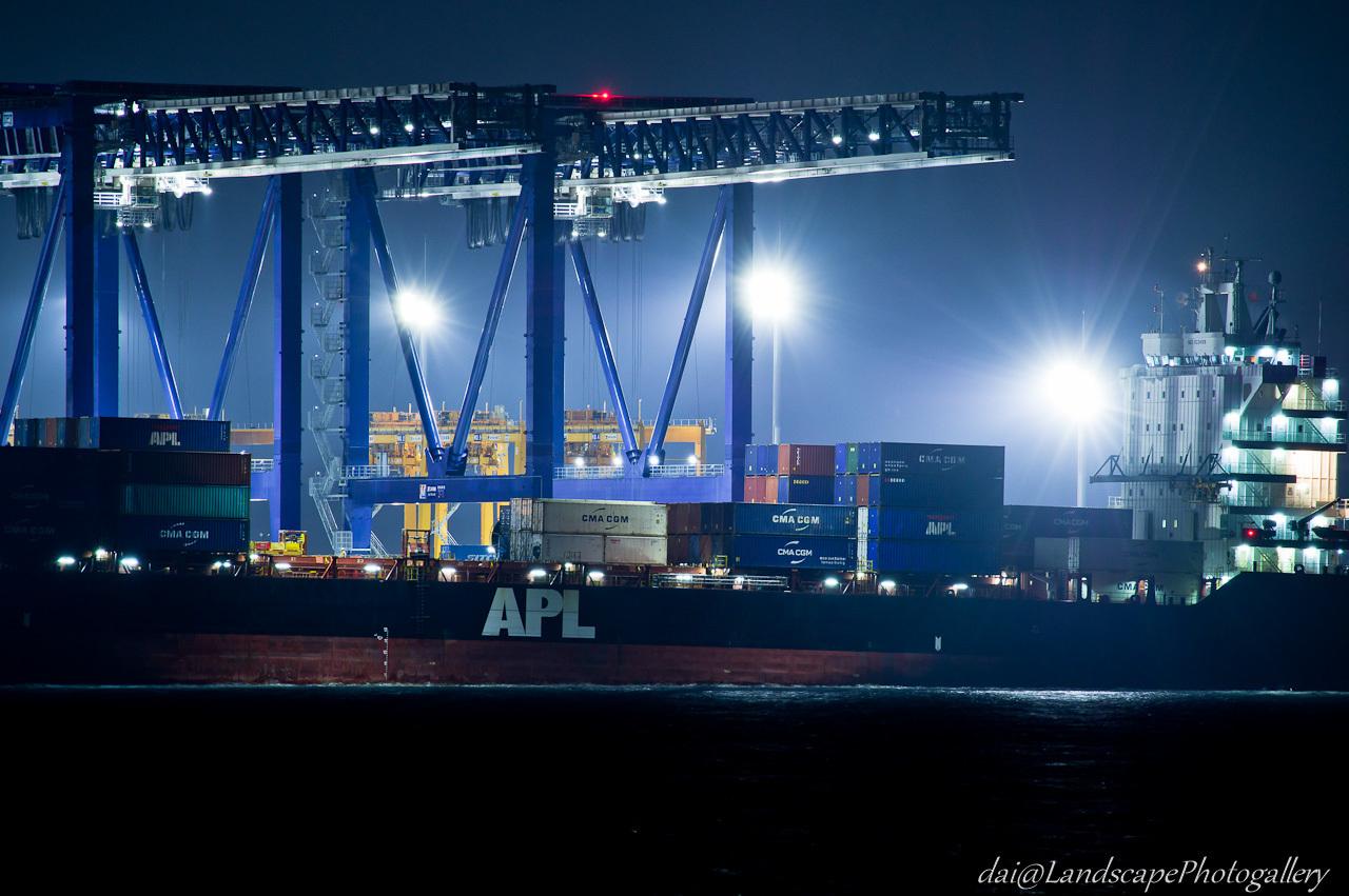 APL CAIRO 東京港荷役風景