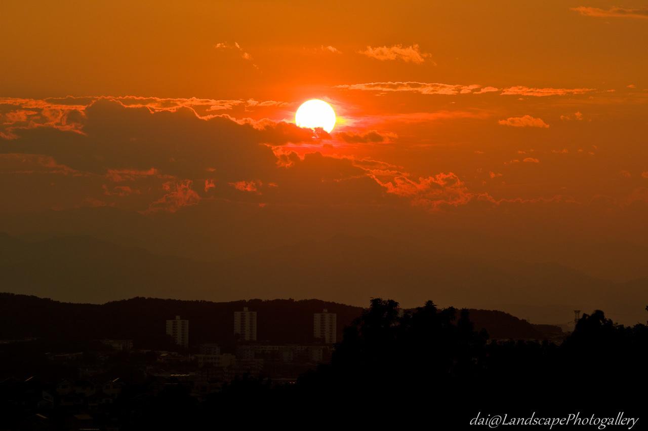 都立桜ヶ丘公園の夕日