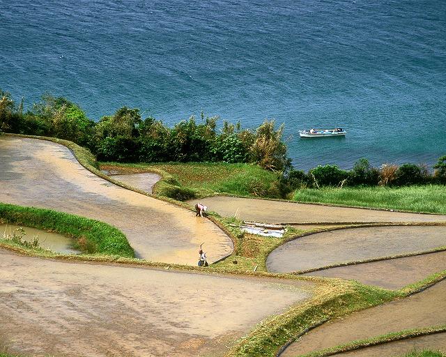 棚田と漁船