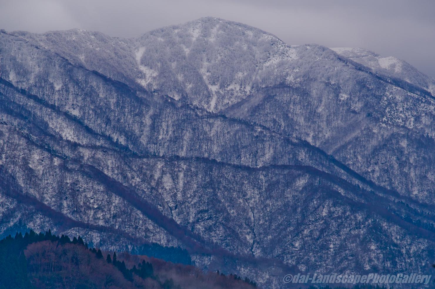 冬の白木峰方面遠望