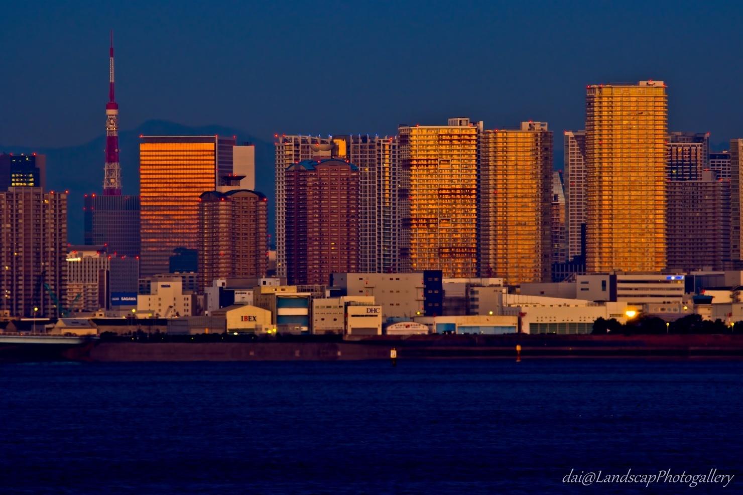 東京湾岸朝景