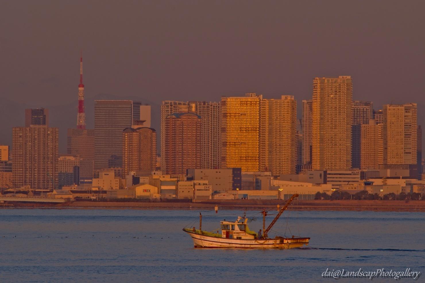 朝陽受ける湾岸タワーマンション群と東京湾の漁風景