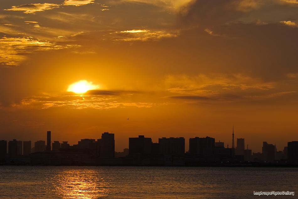東京港の夕日