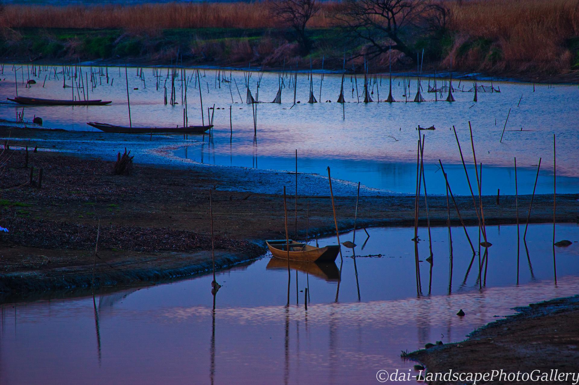 渡良瀬遊水地の夕暮れ