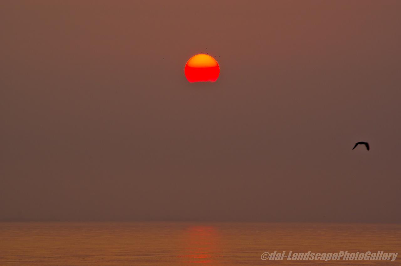 東京湾の朝日